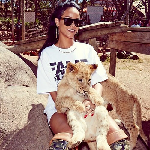Rihanna Visits South African Lion Park